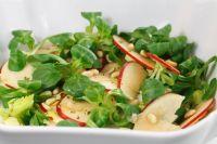 Come fare una insalata Buona, Sana e Nutriente: Le 5 regole da seguire