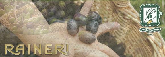Olio Raineri: Olio extravergine dalla Liguria