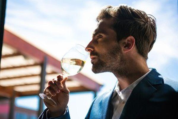 Filtraggio del vino: tecniche e materiali per ottenere un vino a prova di sommelier